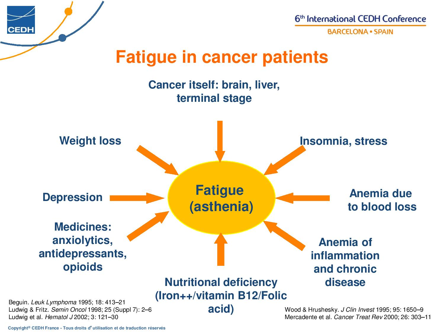 Fatigue and Cancer GASCON DEF EN page 013